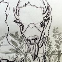 Bison drawing by Christopher Novinski